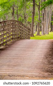 Wooden walkway at the park