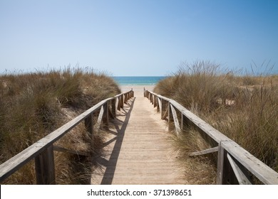wooden walkway or path with hand rail with green blue turquoise water ocean or sea over nature in Vejer Palmar Beach seaside in Cadiz AndalusiaSpain