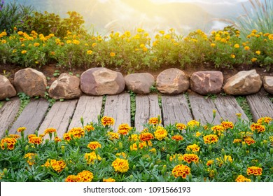 Wooden walkway in yellow Flower garden with green leaves and stone.
