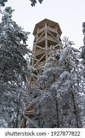 Wooden watch tower in Majakivi nature trail in Aabla raised bog. Protected rare moorland environment. Winter background. Snowy pine branches. Typical in Estonia
