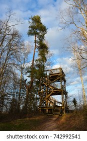 Wooden watchtower in the middle of forest. High trees, blue skies with clouds