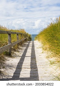 wooden way tho the sea through the dunes at sylt