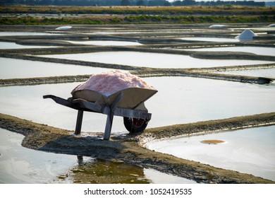 wooden wheelbarrow in front of salt marshes in Noirmoutier, France