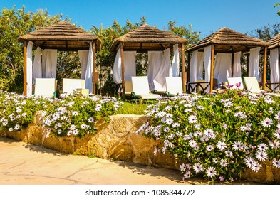 Wooden white pergola with deck chairs and white curtains with white flowers in the foreground on luxury hotel on a sunny day