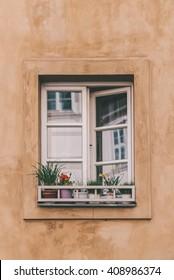 Wooden white window on a background a beige wall. Flowers on a window-sill.