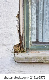 A wooden window frame showing peeling paint and wood rot