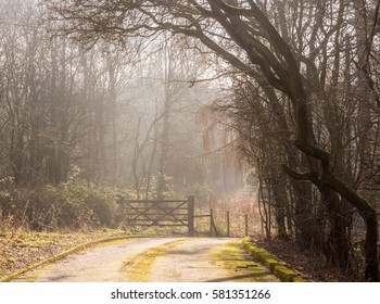 Woodern gate in early morning mist at Lyme Park, Disley, Cheshire, UK