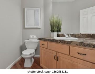 Woodinville, WA / USA - April 1, 2019: Luxury bathroom interior
