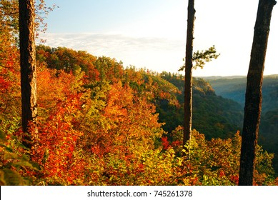 The woodland foothills of the Red River Gorge in Kentucky turn a plethora of colors in autumn