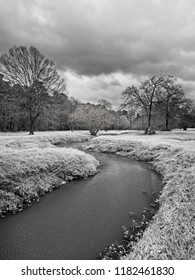 The Woodlands, TX USA - Feb. 20, 2018  -  Water Stream in a Woods 2 in B&W