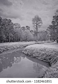 The Woodlands, TX USA - Feb. 20, 2018  -  Water Stream in a Woods in B&W