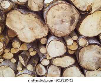 Woodpile made of cut wood and you can see annual rings