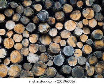 Woodpile of round firewood. Pile of round firewood for the furnace.