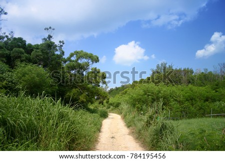Woods and Sky in Okinawa