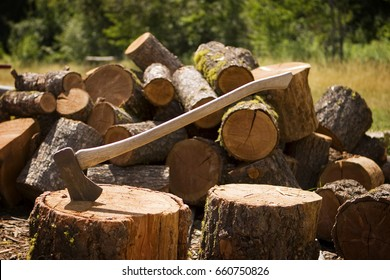 A woodsman's axe, at rest in a block of wood, which is in front of a large pile of cut logs.