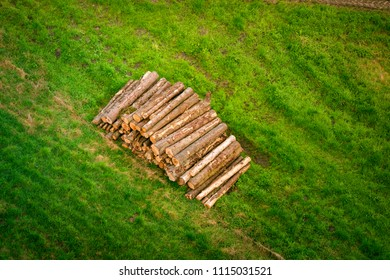 Woodstack with logs on a green field in rural surroundings in the summer