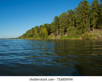 woody coast of lake. blue water with blue sky in sunny day