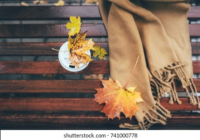 Wool scarf and paper cup with cooffe arre on wet brench in autumn park