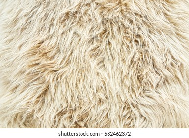 Wool texture for background.