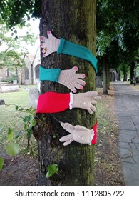 Woolen sleeves and gloves, hugging a tree, to represent. The environmental need for trees on our planet.
