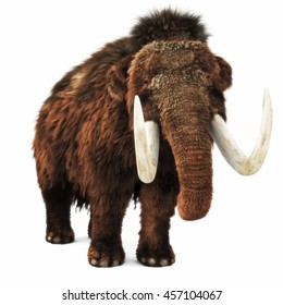 Woolly Mammoth on an isolated white background. 3d rendering