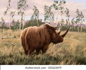 Image result for images of woolly rhinoceros