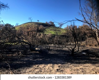 Woolsey Fire Aftermath 2018 Nov