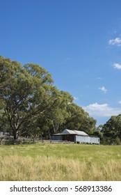 Woolshed in Australian landscape