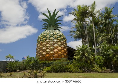 Woombye, Australia - December 1, 2012: Image shows the Big Pineapple (16 meter high statue) - a tourist attraction on the Sunshine Coast, Queensland, Australia