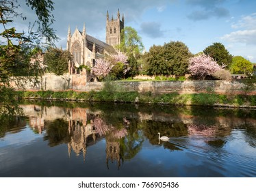Worcester Cathedral in Worcestershire, England, seen across the River Severn on a fine spring evening. The Cathedral was built between 1084 and 1504.