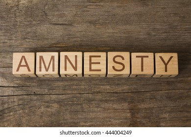 the word of AMNESTY on a wooden cubes