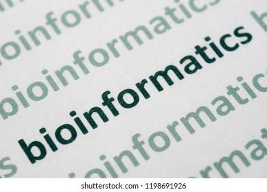word bioinformatics printed on white paper macro