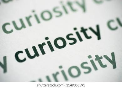 word curiosity printed on white paper macro