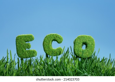 word of eco on grass under blue sky