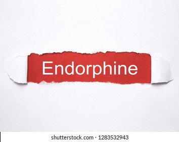 Word Endorphine on torn paper.