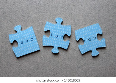 The word Evolution against background of human genome sequence printed on mismatched jigsaw pieces.