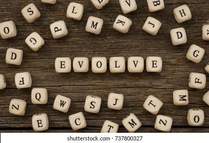 Word EVOLVE written on wood block,stock image