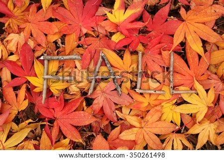 word fall spelled out sticks on stock photo edit now 350261498