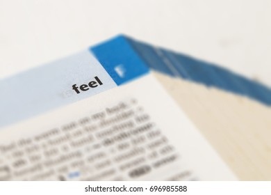 the word feel on dictionary english for study on background white