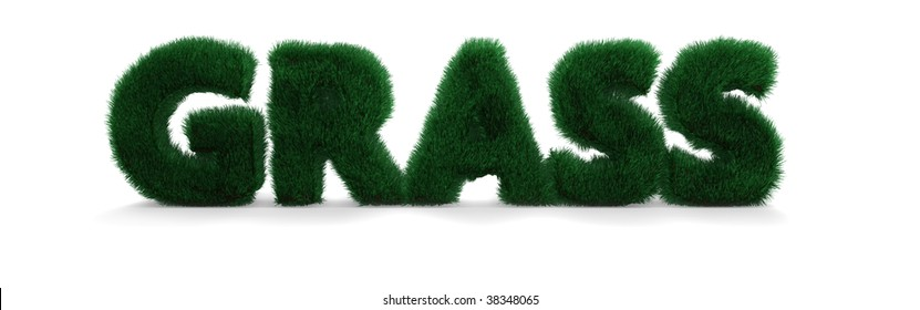 """Word """"Grass"""" written in a furry style"""