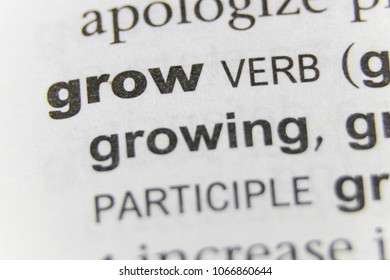 The Word Grow Close Up