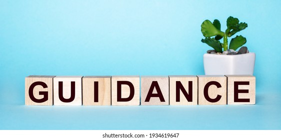 The word GUIDANCE is written on wooden cubes near a flower in a pot on a light blue background