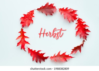 Word Herbst surrounded by red oak Autumn leaves. Paper text Herbst means Autumn in German language. Simple seasonal minimal design element Top view, flat lay on off white background. - Shutterstock ID 1988382809