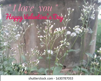 "The word ""I love you"" ""Happy Valentine'sDay""on grass flowers background"