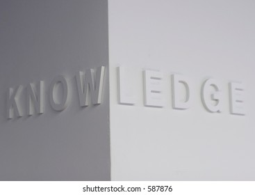 """The word """"knowledge"""" embossed on a white wall, partially blurred"""