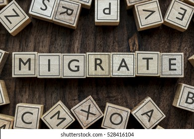the word of MIGRATE on building blocks concept