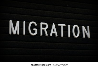 The word Migration in white plastic letters  on a felt letter board