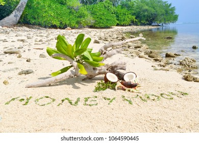 Word 'Honeymoon' on the beach, handwritten with green leaves on brown sand with space for your text and design. Concept be used for card, wallpaper and symbol of heart or love for Valentine's Day.