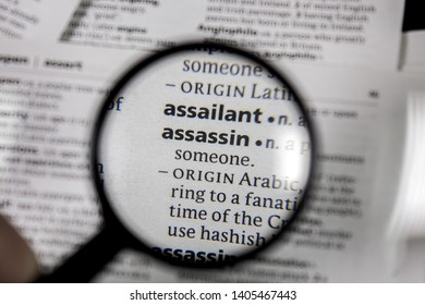 The word or phrase assassin in a dictionary book.