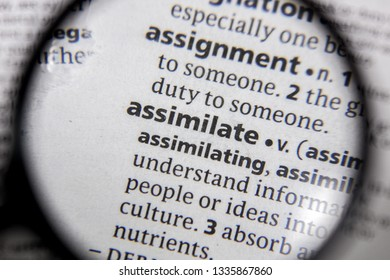 The word or phrase assimilate in a dictionary.